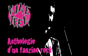Nineteen / Anthologie d'un fanzine rock