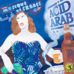ACID ARAB : Musique de France - Longueur d'Ondes