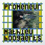 Mathieu Boogaerts, l'album Promeneur sur Longueur d'Ondes