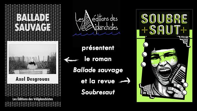 Editions des Veliplanchistes publient roman d'Axel Desgrouas - Longueur d'Ondes