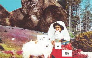 JOY AS A TOY