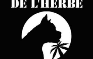LE PEUPLE DE L'HERBE