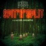 The Experimental Tropic Blues Band, leur album Spit'N'Split sur Longueur d'Ondes