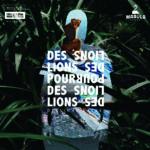 """Des Lions Pour Des Lions, leur album """"Derviche Safari"""""""