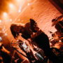 STEVE AMBER – THE TWIN SOULS – NOBODY'S CULT