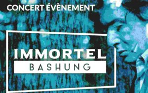 IMMORTEL BASHUNG