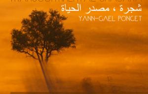 YANN-GAEL PONCET